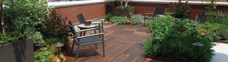 Thiết kế sân vườn khi đã áp dụng chống nóng hiệu quả