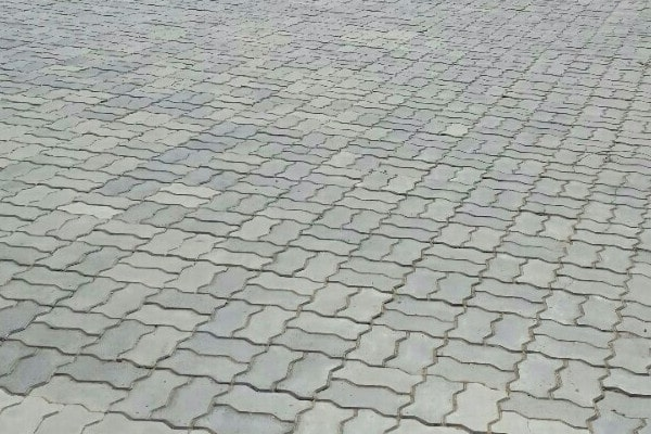 Gạch bê tông sân vườn hình con sâu