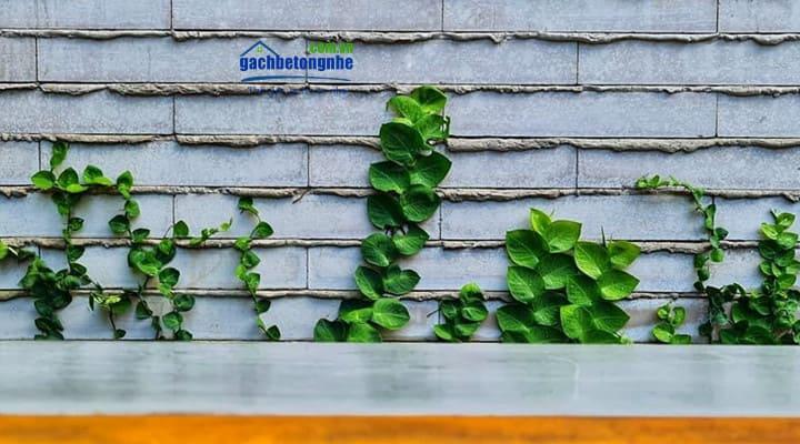 Xây tường rào đẹp với gạch aac block bê tông nhẹ